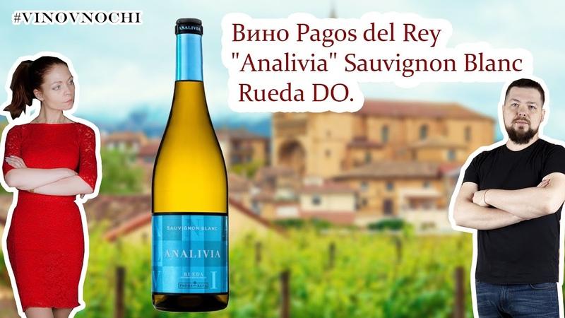 Совиньон Блан из Испании вкусно и недорого Pagos del Rey Analivia Sauvignon Blanc Rueda DO