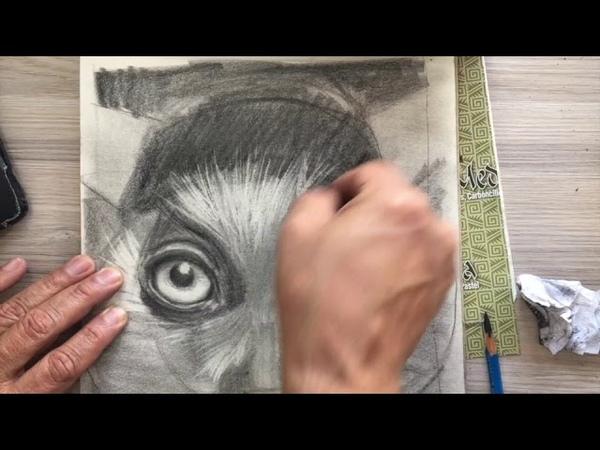 Talleres de dibujo y pintura en bogotá con chamo estudio