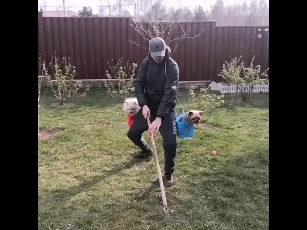 Васіль Гуркоў спарадыраваў Лукашэнку