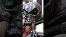 Глаза космос Паук по мотивам skulltula