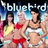 Bluebirdfilms