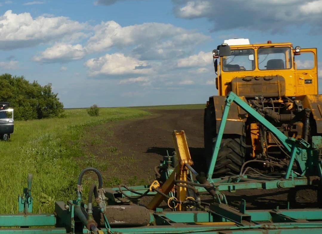 Аграрии Петровского района активно ведут посевную кампанию