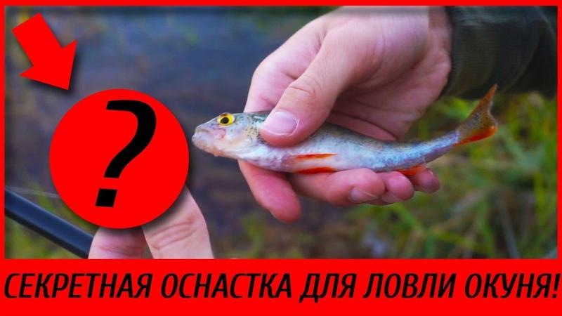 Самая Уловистая Оснастка Для Ловли Окуня 2019