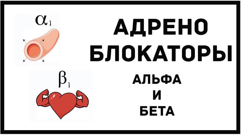 Альфа и бета блокаторы симпатолитики