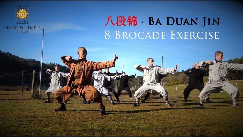 八段锦 · Ba Duan Jin (8 Brocade Exercise) Qi Gong