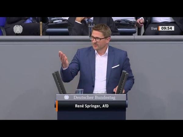 Bundestag Bei dieser Rede wird Rene Springer AfD als Nationalsozialist beschimpft Schüble rügt