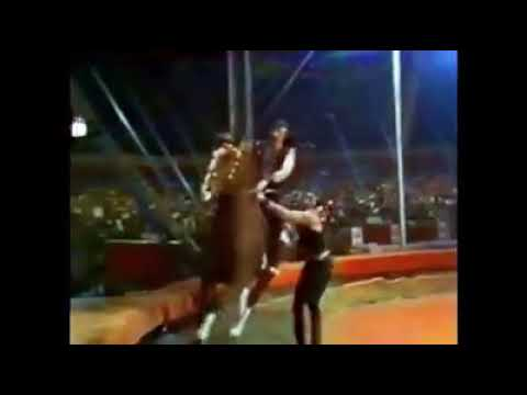 Tamerlan Nugzarov The Golden clown in Monte Carlo 1984
