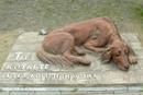 В Красноярском крае установили памятник бездомной собаке.