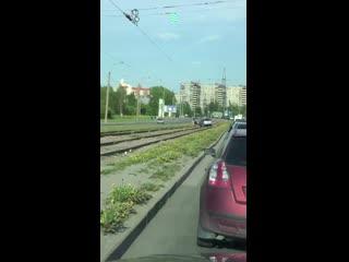 Забрался на рельсы на Ириновском