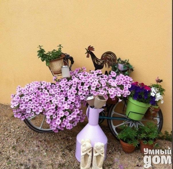 Велосипед-кашпо. Вторая жизнь старых вещей дом мастерская чудес!