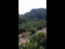 Чайные домики (чайная плантация)