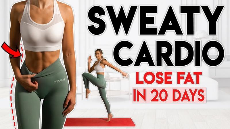 Lilly Sabri SWEATY CARDIO FAT LOSS no jumping Кардио тренировка для сжигания жира без прыжков