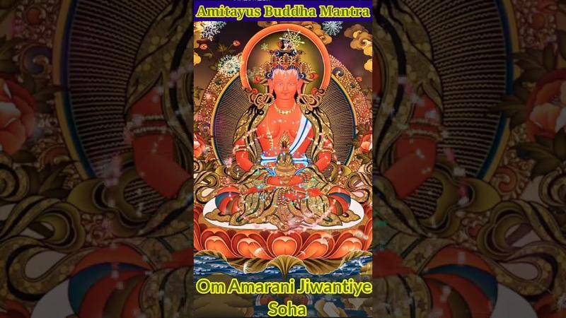 Amitayus Buddha Mantra Om Amarani Jiwantiye Soha Buddhist Mantra Buddha Longevity Mantra