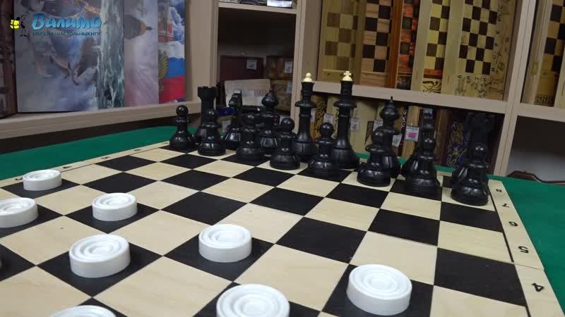 Шахматы Шашки Айвенго