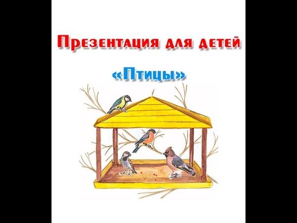 Зимующие и перелетные птицы презентация для детей