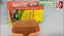 Кусок дешевого МЫЛА - лучшее средство для подкормки и защиты от болезней и вредителей.