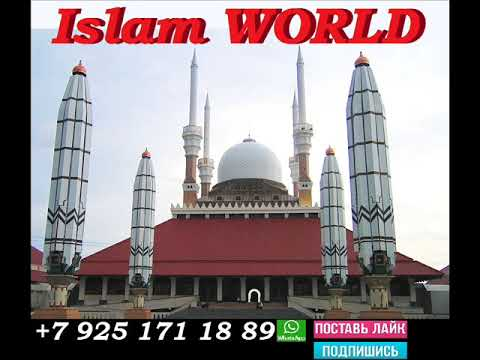Послушай Обязательно! И Помни в Этом Мире кроме Аллаха Тебе никто не поможет! Сильное ДУА!