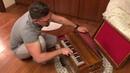Фисгармония индийская. 3х голосая гармонь. Harmonium 3 reeds