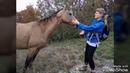 Грозовые ворота Походы из Новороссийска