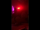 Noah Cyrus «The Good Cry Tour» — All Falls Down
