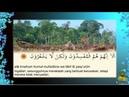 Surat Al Baqarah Ayat 12