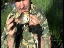 видео-15-06-2015г-рыбалка в пушкарях-карась попался на катушку,спининг.