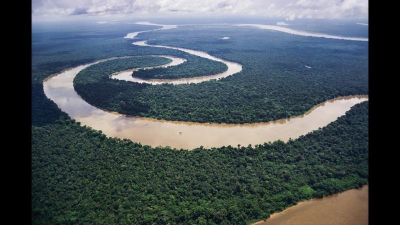 Мир дикой природы ч.1 Дождевые леса Амазонии NatGeoWild