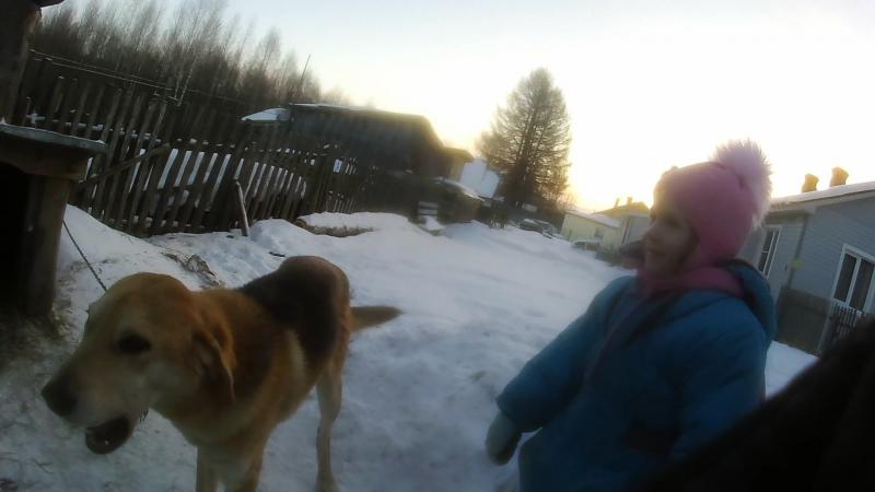 5 Женя и Саша на улице с собакой