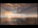 Царствие небесное - мысли под гитару Владимир Зыбкин