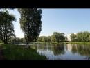 Муринский парк и Дог