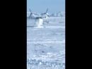 Летающая лодка приземлилась в Магадане
