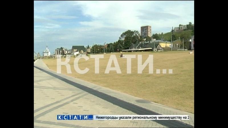 Жара убавила яркость на Нижневолжской набережной - новый газон пожелтел