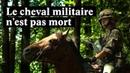 Des soldats suisses à cheval