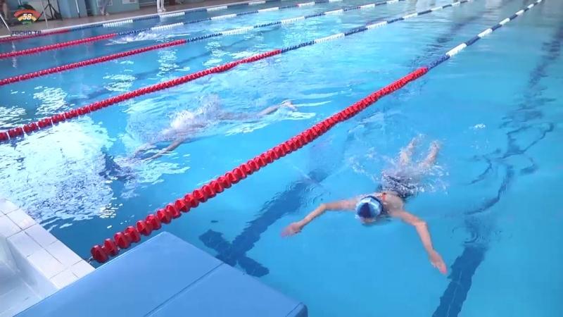 Открытое первенство г.Тосно по плаванию в бассейне Лазурный