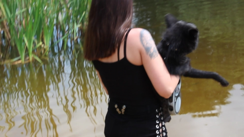 купание лисы ЛисЛоки