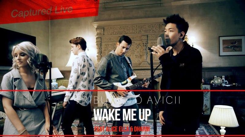 Avicii - Wake Me Up [Live Cover] Rex Pearson ft Dharni Beatbox Alice Ella
