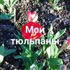 Надежда Бойцова