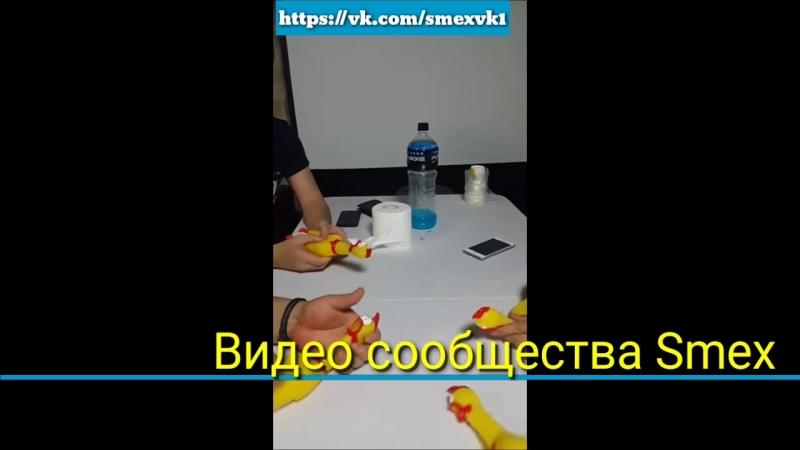 топ видео порн блондинка латинка смачное мулатка рыжая чёрная русая русское домашнее жопа сиська губы смех юмор