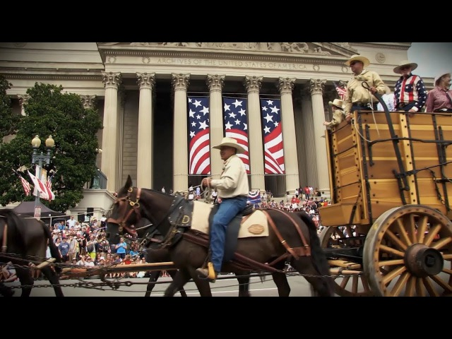 20 mules and Borax wagons in Washington DC