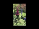 Танец в яблоневом саду