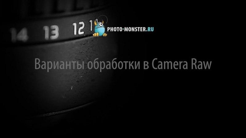 Варианты обработки в Camera Raw