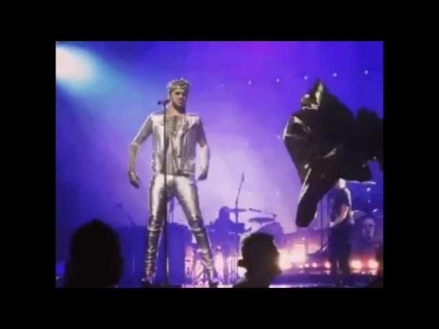 Adam Lambert's IG video : Adelaide 🎬@ironpeeeach 2018-02-28