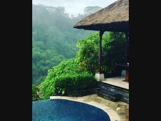 Ubod, Bali, Indonesia