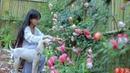 (笋)Best Time of Year to Comsume Juicy and Tender Bamboo Shoots Pick As Much As You Like|Liziqi