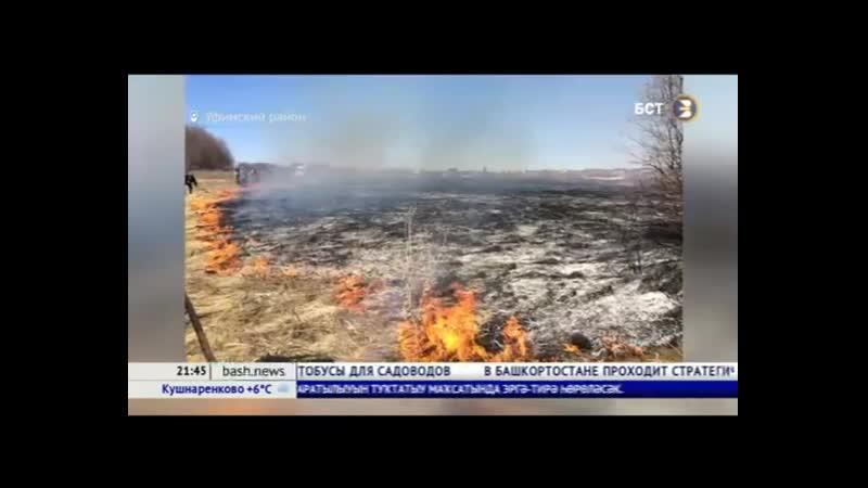 Под Уфой произошел степной пожар
