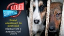 Жестокое обращение с Животными ► Статья 245 УК РФ