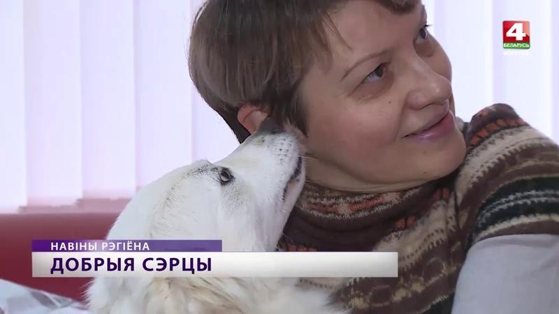 Могилевские библиотекари решили помочь бездомным животным [БЕЛАРУСЬ 4  Могилев]