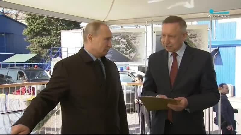 Владимир Путин оценил проект арт-парка на Петроградской стороне