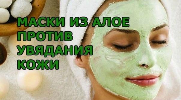 Полезные маски с алоэ, предотвращающие быстрое старение кожи.