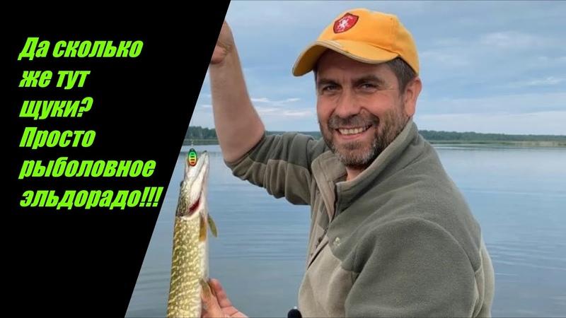 Да сколько же тут щуки Просто рыболовное эльдорадо Ловим щуку на озере с лодки